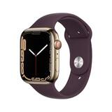 Apple Watch Series 7 Celluar Edestahl