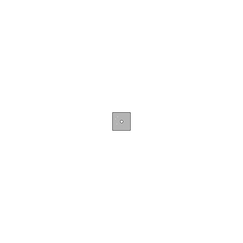 Cokin A061 Center Spot Incolor 2