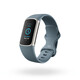 Fitbit Charge 5 Steel Blue/ Platinum Stainless Steel