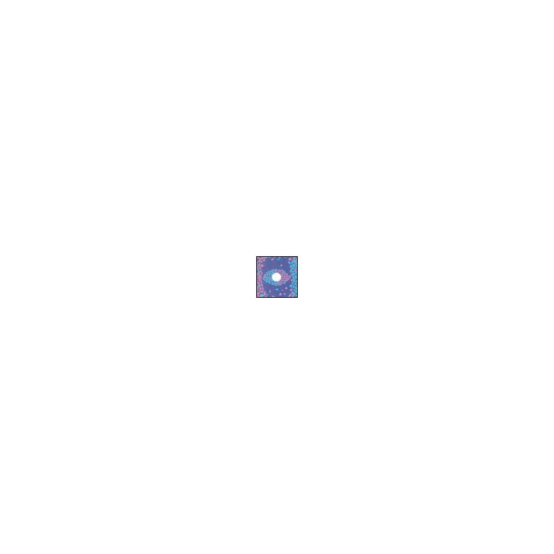 Cokin A672 Center Spot 2 Pink/Blau