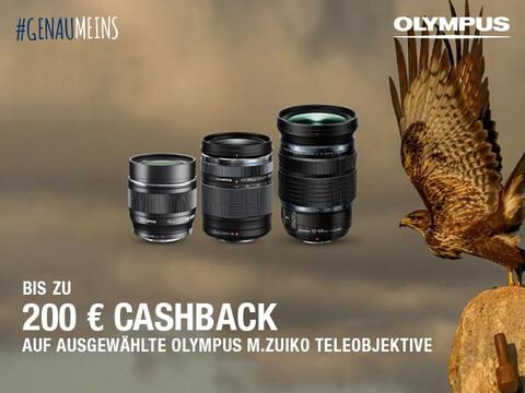 drei verschieden große OLYPMUS M.Zuiko Teleobjektive neben Raubvogel mit Cashback-Aktionsinfo