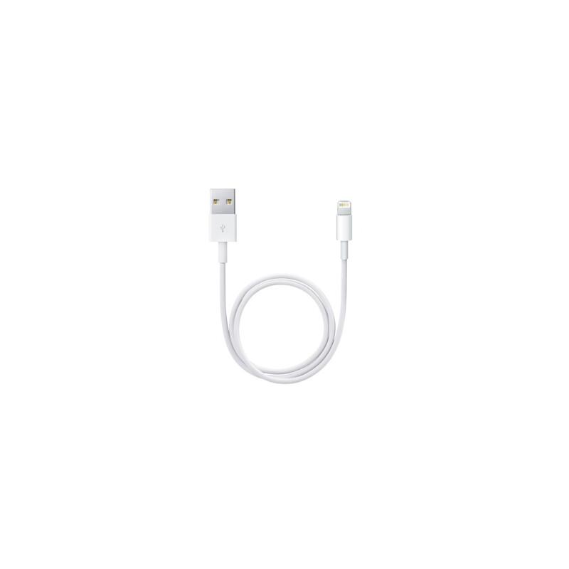 Apple Lightning auf USB Kabel 0,5 Meter