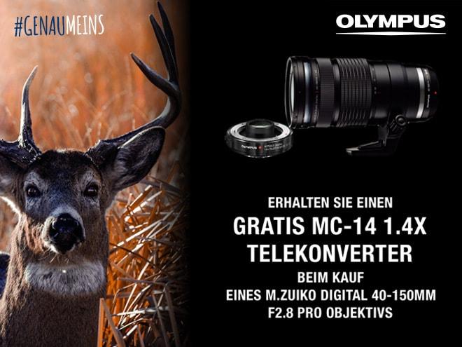 Hirsch in Nahaufnahme mit Olympus M.Zuiko Objektiv und Telekonverter auf schwarzem Hintergrund sowie Aktionshinweis