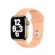 Apple Watch 40mm Sportarmband cantaloupe
