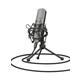 Trust GXT 242 Lance Desktop Microphone