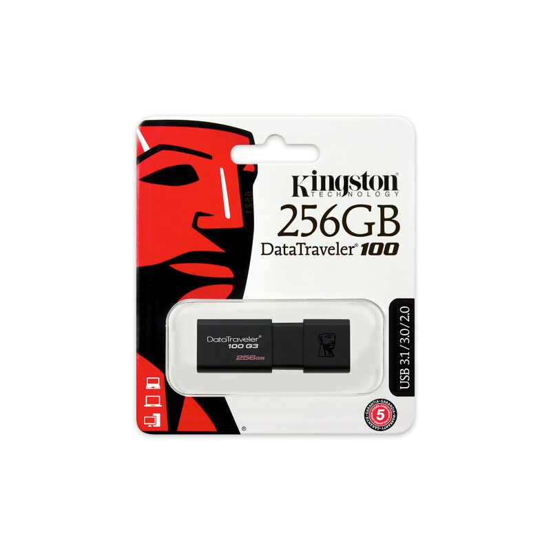 Kingston DT100 256GB USB 3.0 Stick