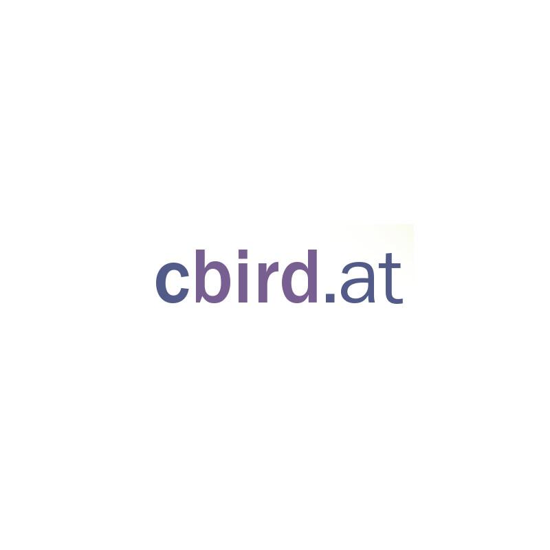 cbird Registrierkasse auf USB-Stick