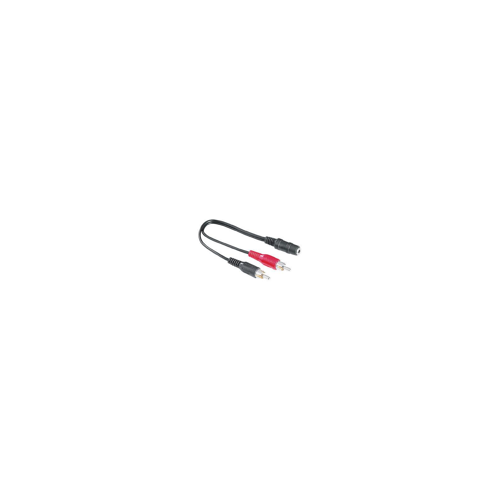 Hama 43254 Audio-Adapter 2 Cinch-Stecker - 3,5-mm-Klinken-Ku