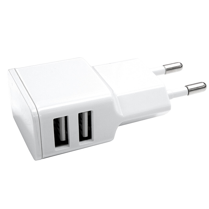 Axxtra GNG 2.4 Amp Dual USB Wall Charger