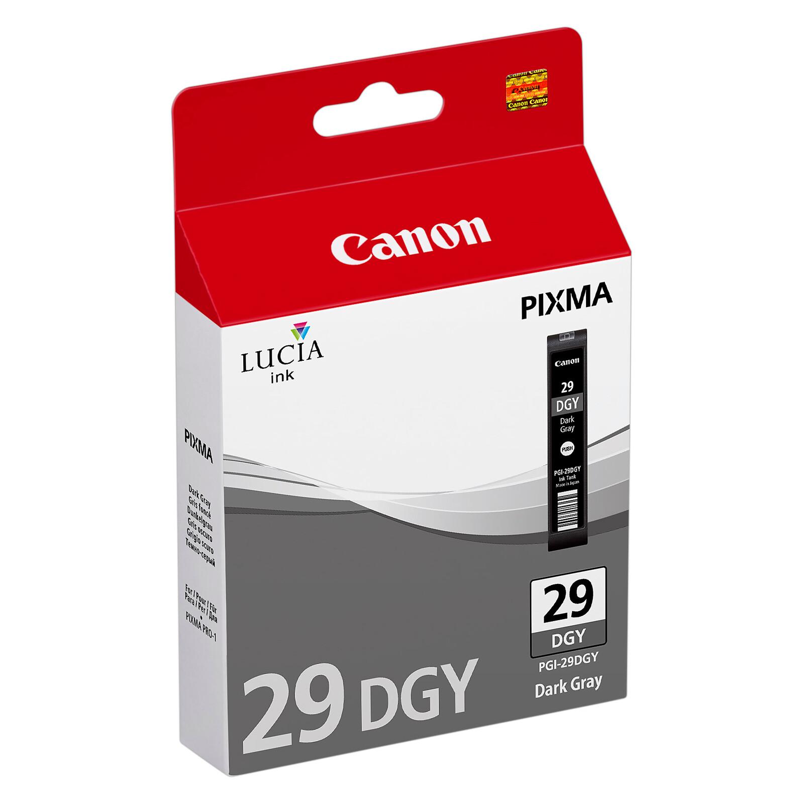 Canon PGI-29DGY Tinte Dark Grey