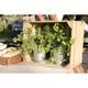 Securit Silhouette TAG Gartenstecker BUBBLE mit Kreidestift